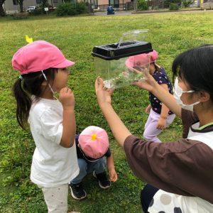 虫を捕まえて遊ぶ子ども
