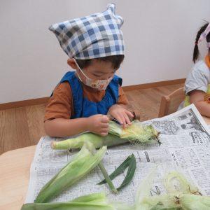 トウモロコシの皮を剥く園児